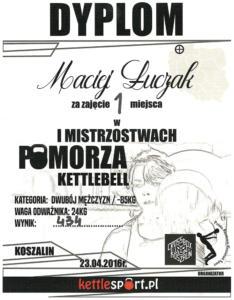 Maciej Luczak Dyplom (10)